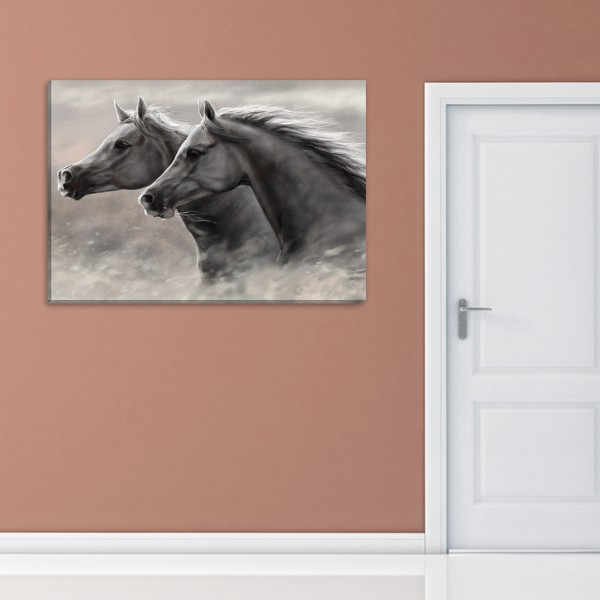 two white horses canvas frames Rs.1-499 Price Online - TheWarehouse