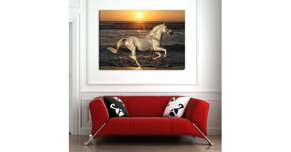 white horse canvas frames Rs.1-499 Price Online - TheWarehouse