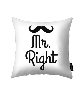 mr right printed pillow