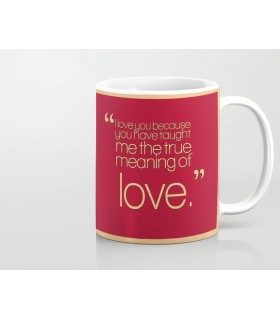you taught me true meaning of love printed mug